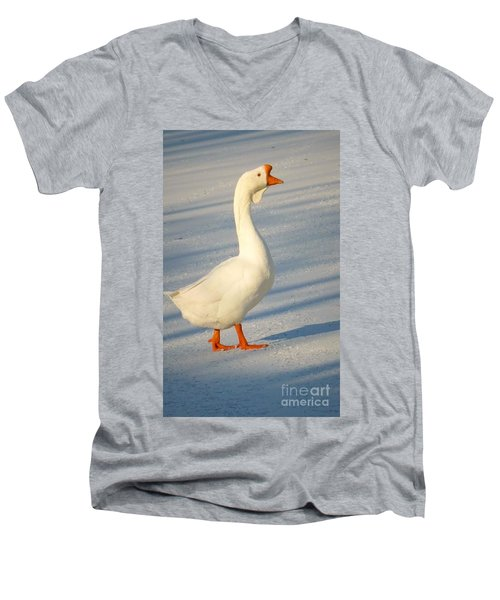 Chinese Goose Winter Men's V-Neck T-Shirt