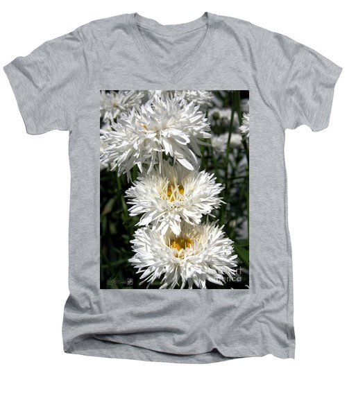 Men's V-Neck T-Shirt featuring the photograph Chrysanthemum Named Crazy Daisy by J McCombie
