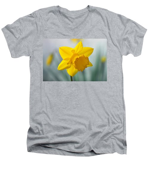 Classic Spring Daffodil Men's V-Neck T-Shirt by Terence Davis