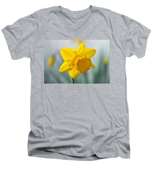 Classic Spring Daffodil Men's V-Neck T-Shirt