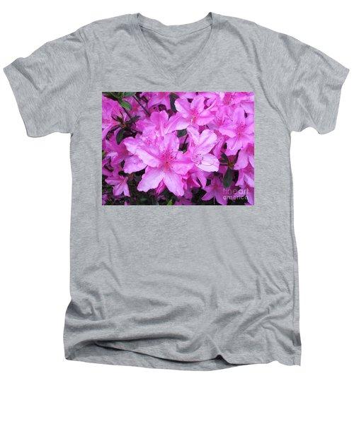 Azaleas Men's V-Neck T-Shirt by Donna Dixon