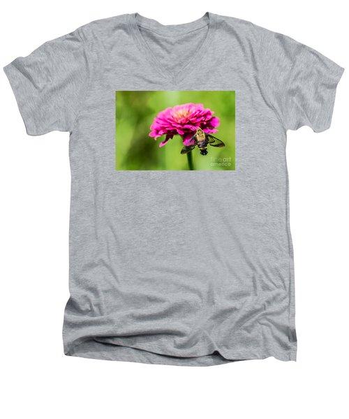 Clearwing Moth Men's V-Neck T-Shirt by Debbie Green