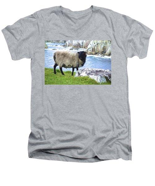 Clew Bay Sheep Men's V-Neck T-Shirt