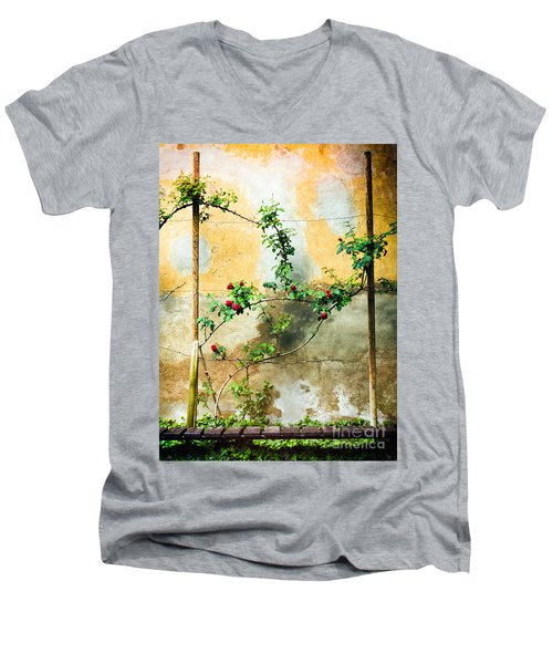 Men's V-Neck T-Shirt featuring the photograph Climbing Rose Plant by Silvia Ganora