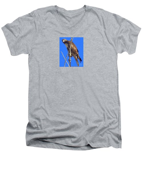 Hawk Close Up  Men's V-Neck T-Shirt by Bobbee Rickard