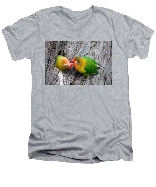 Close-up Of A Pair Of Lovebirds, Ndutu Men's V-Neck T-Shirt