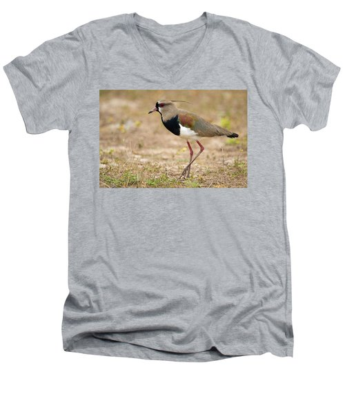 Close-up Of A Southern Lapwing Vanellus Men's V-Neck T-Shirt by Panoramic Images