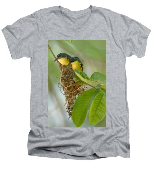 Close-up Of Two Common Tody-flycatchers Men's V-Neck T-Shirt