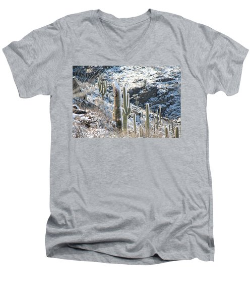 Cold Saguaros Men's V-Neck T-Shirt