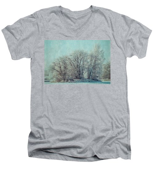 Cold Winter Day Men's V-Neck T-Shirt