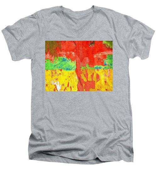 Color Splash  Men's V-Neck T-Shirt