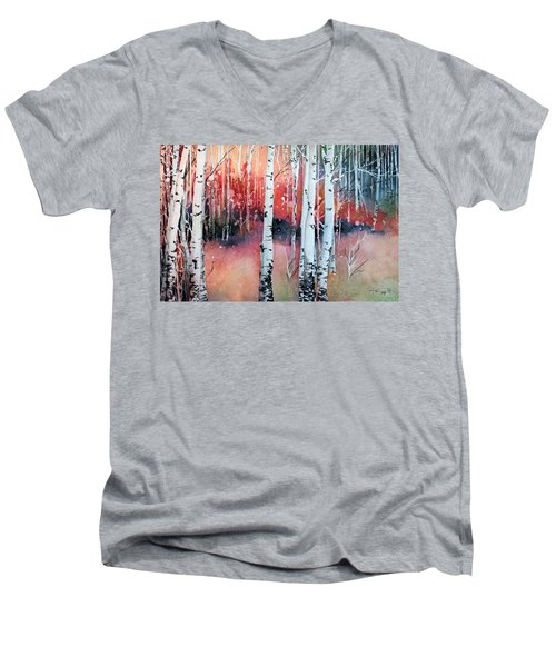Colorado Men's V-Neck T-Shirt