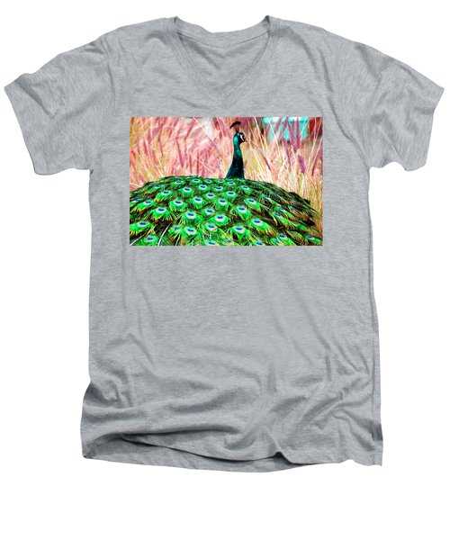 Men's V-Neck T-Shirt featuring the photograph Colorful Peacock by Matt Harang