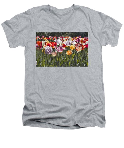 Colorful Tulips In The Sun Men's V-Neck T-Shirt