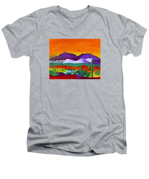 Colour Explosion Men's V-Neck T-Shirt