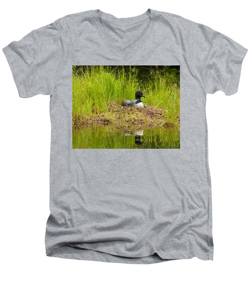 Common Loon Nesting Men's V-Neck T-Shirt