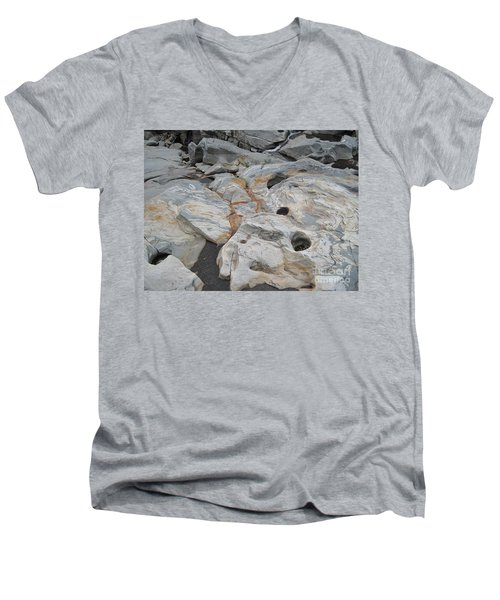 Connecticut River Bed Men's V-Neck T-Shirt