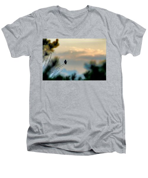 Contemplation Men's V-Neck T-Shirt by Bruce Patrick Smith