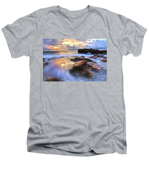 Coral Garden Men's V-Neck T-Shirt