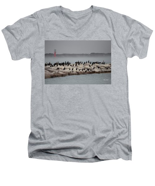 Cormorant Island Men's V-Neck T-Shirt by Debra Martz