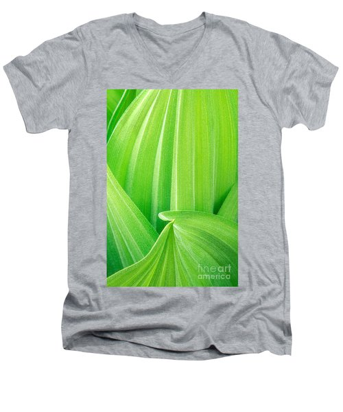 Men's V-Neck T-Shirt featuring the photograph Corn Lily Leaf Detail Yosemite Np California by Dave Welling