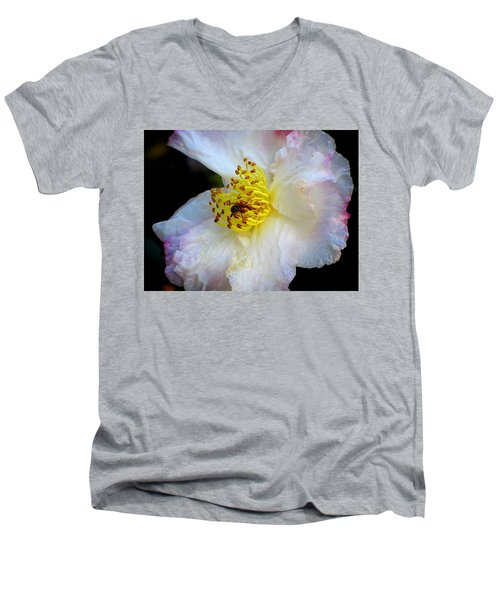 Men's V-Neck T-Shirt featuring the photograph Cotton Candy by Greg Simmons