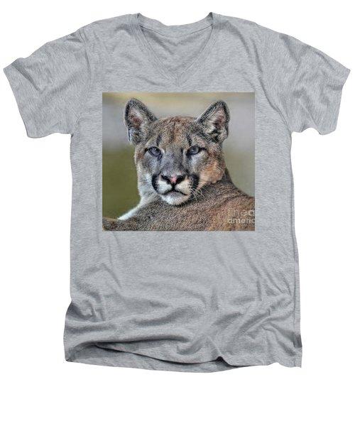 Men's V-Neck T-Shirt featuring the photograph Cougar  by Savannah Gibbs