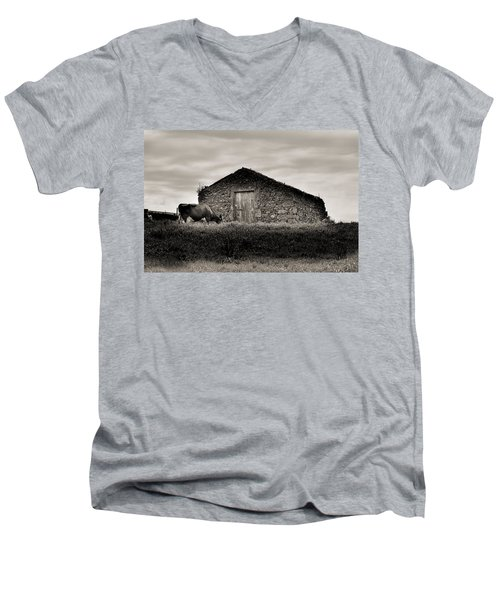 Cow Grazes At Rustic Barn  Men's V-Neck T-Shirt