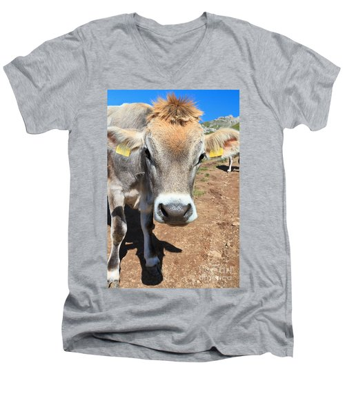 Cow On Alpine Pasture Men's V-Neck T-Shirt