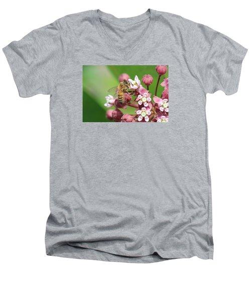 Crazy For Milkweed Men's V-Neck T-Shirt by Lucinda VanVleck