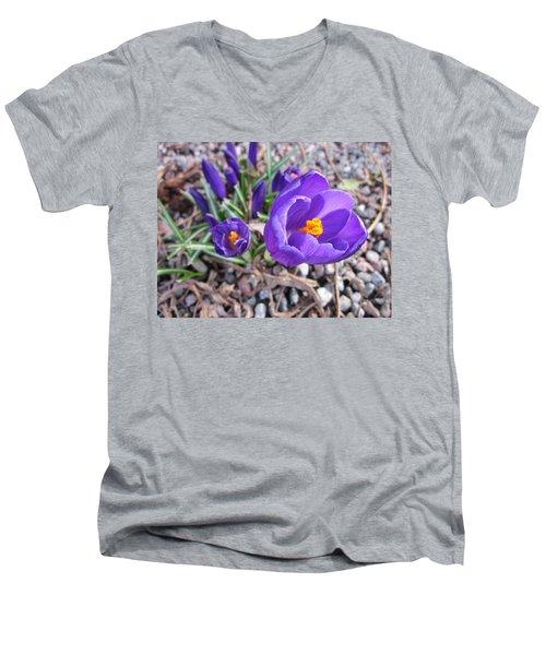 Crocus Sativus Men's V-Neck T-Shirt