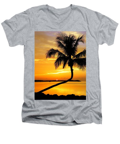 Crooked Palm Men's V-Neck T-Shirt by Karen Wiles
