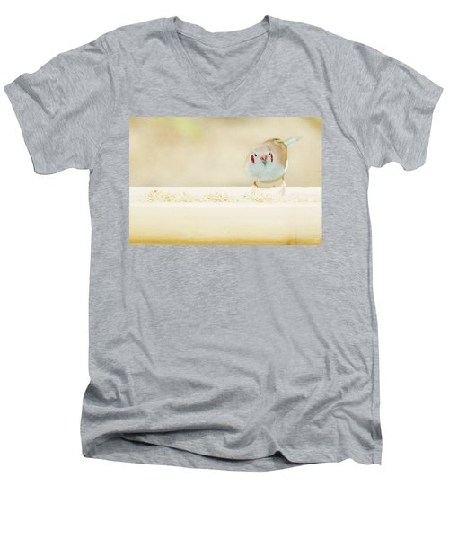 Curious Cordon Bleu Finch  Men's V-Neck T-Shirt