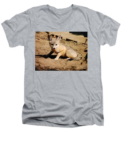 Curious Kit Fox Men's V-Neck T-Shirt