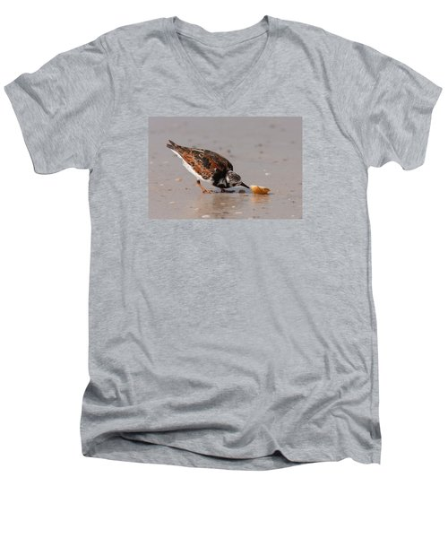 Curious Turnstone Men's V-Neck T-Shirt by Paul Rebmann