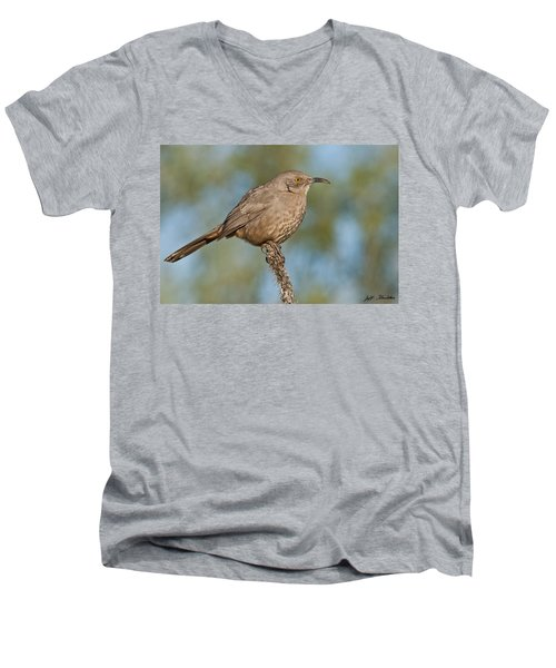 Curve-billed Thrasher Men's V-Neck T-Shirt