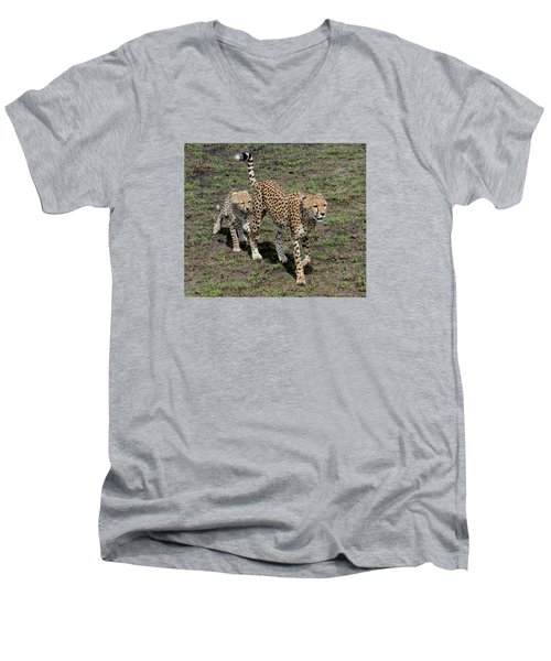 Men's V-Neck T-Shirt featuring the photograph Cute Cheetah Wait For Me Mommy by Tom Wurl