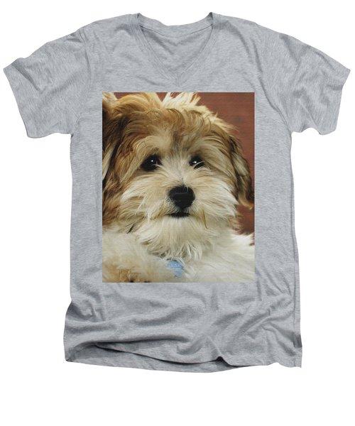 Cutie Pie Men's V-Neck T-Shirt by James C Thomas