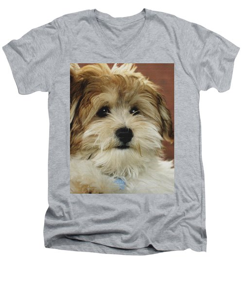 Cutie Pie Men's V-Neck T-Shirt