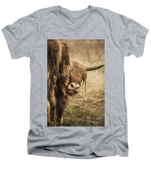 Highland Cow Damn Fleas Men's V-Neck T-Shirt