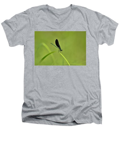 Damselfly  Men's V-Neck T-Shirt