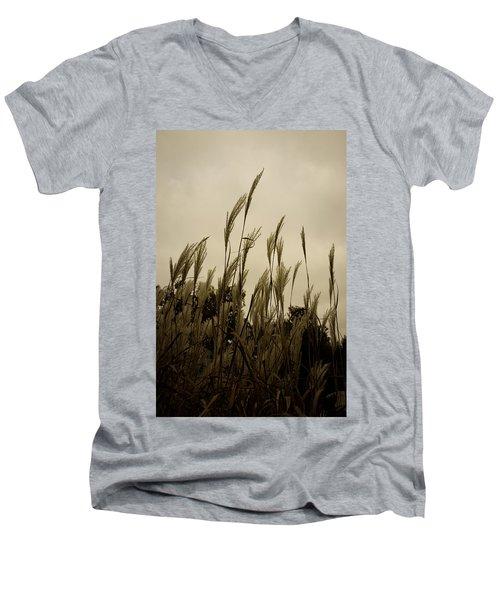Dancing Grass Men's V-Neck T-Shirt