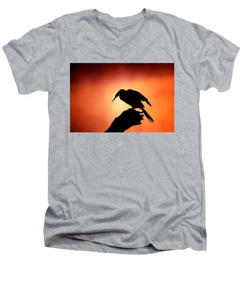 Darter Silhouette With Misty Sunrise Men's V-Neck T-Shirt