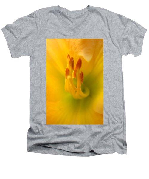 Tickle Your Fancy Men's V-Neck T-Shirt
