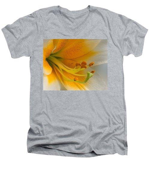 Gold Daylily Close-up Men's V-Neck T-Shirt