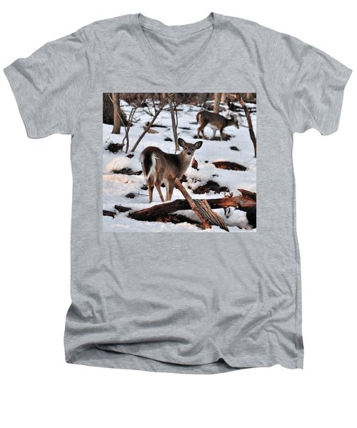 Deer And Snow Men's V-Neck T-Shirt