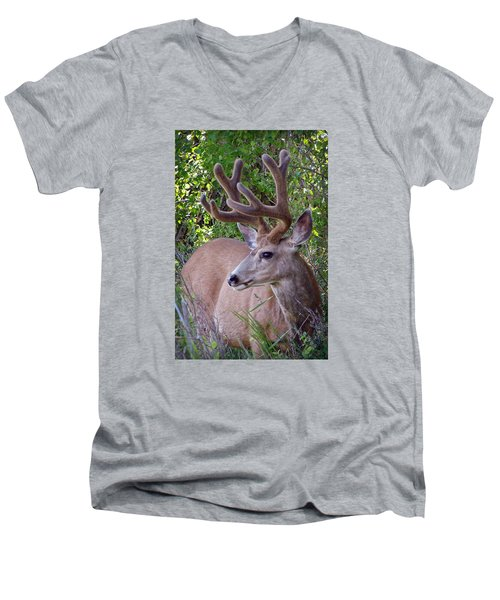 Men's V-Neck T-Shirt featuring the photograph Buck In The Woods by Athena Mckinzie