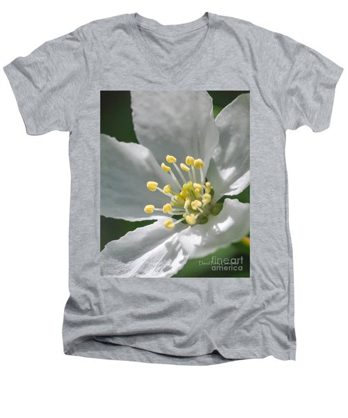 Delcate Widflower With Beautiful Stamen Men's V-Neck T-Shirt