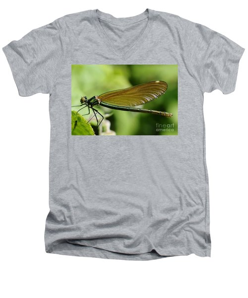 Demoiselle Men's V-Neck T-Shirt