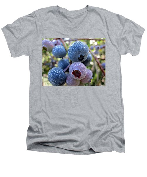 Dewy Blueberries Men's V-Neck T-Shirt